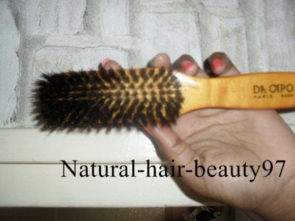 La brosse à poil de sanglier (l)