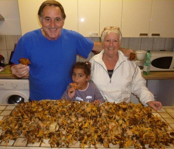 en ce 11 novembre 2013 ...quelques chanterelles ramassées dans l'arriére pays de ..Grasse , avec ma femme Eliette et me petite fille LYS