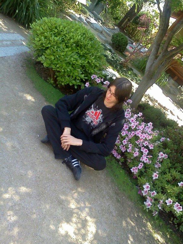 Quand on est dans le jardin japonnais de monaco