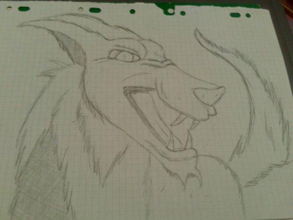 Un loup :)