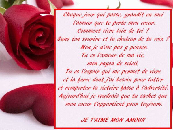 Pour mon amour