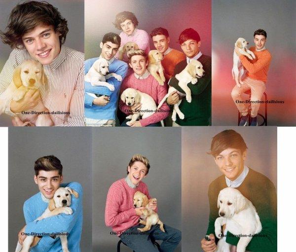 Les One Direction posent pour ''Wonderland Magazine''