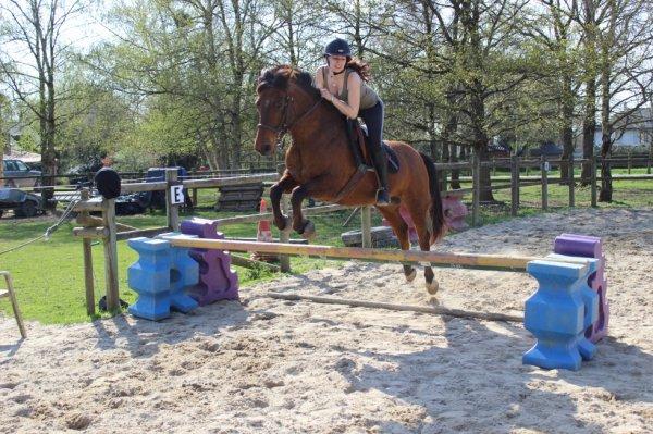 mon amour de petit poney