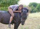 Photo de AV-affaire-cheval