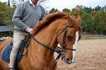 Centre Equestre de l'Eperon des crêtes, Brive la gaillarde