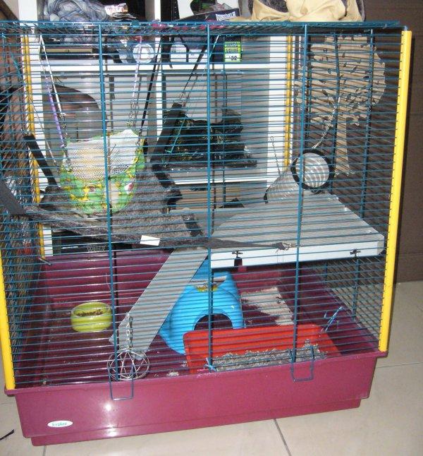 La cage de Furax