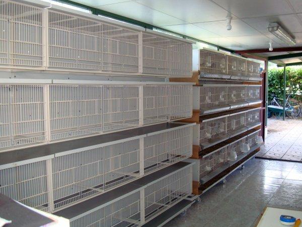 Fotos de aviario eurovillas blog de aviario de canarios - Modulos de canarios ...