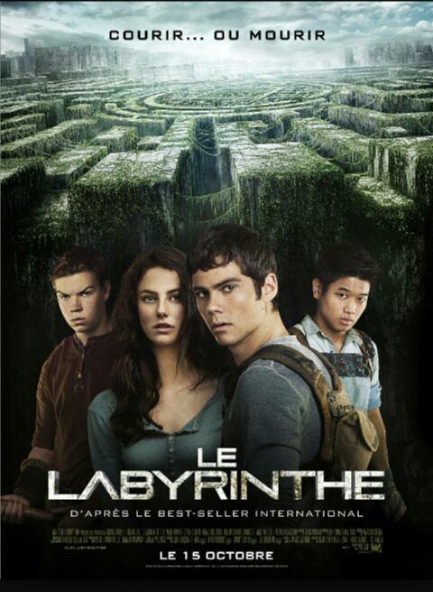 L'épreuve: tome 1: Le Labyrinthe