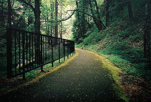 # # # Je te suivrais, quelque soit le chemin à prendre. Toujours.______ # #