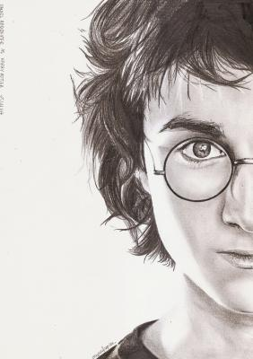 (316) - Harry Potter
