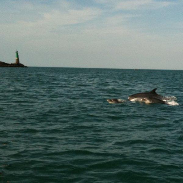 Photo du pré fishing de saint Malo