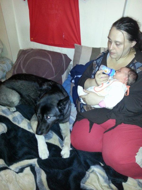 bebe ma maman mon chien et moi