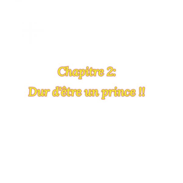 fiction 1 chapitre 2: Dur d'être un prince !!!