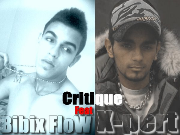X-pert ft Bibox flow critique 2011
