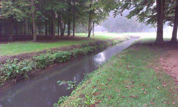Le parc un jour brumeux