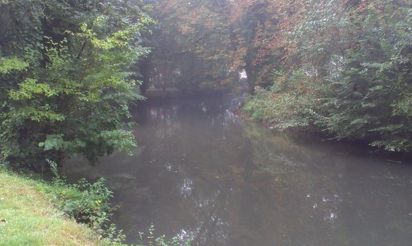 Le parc un jour brumeux 2