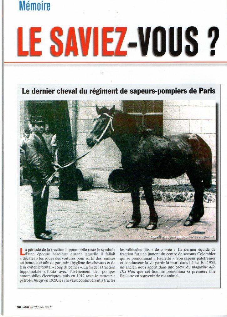 LE DERNIER CHEVAL DU REGIMENT DES SAPEURS-POMPIERS DE PARIS