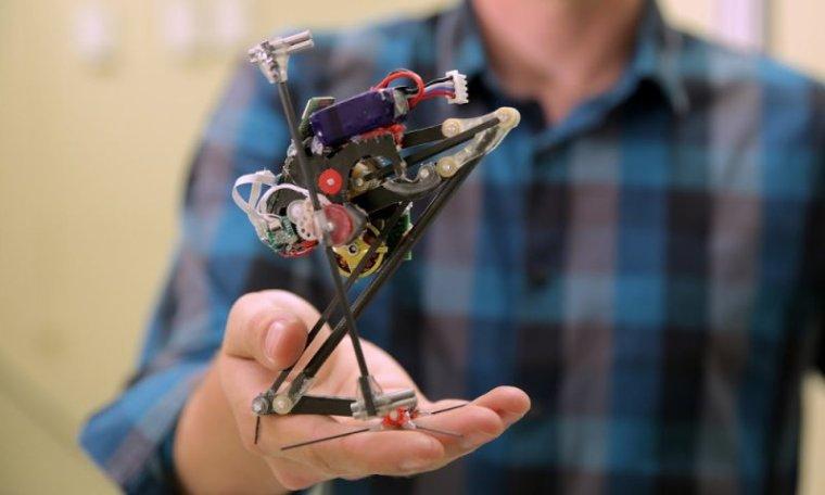 SALTO : PETIT ROBOT SECOURISTE QUI S ' INSPIRE DU LEMURIEN