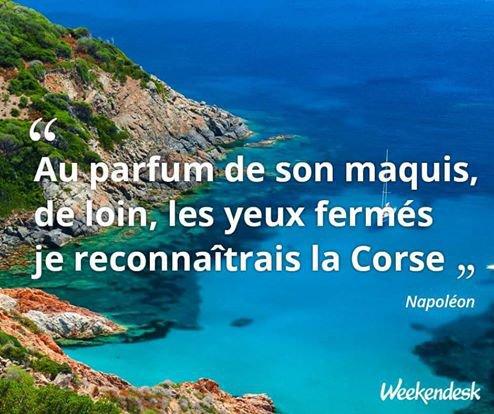 Citation De Napoleon La Corse