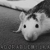 AdorableMilka