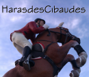 Photo de HarasdesCibaudes