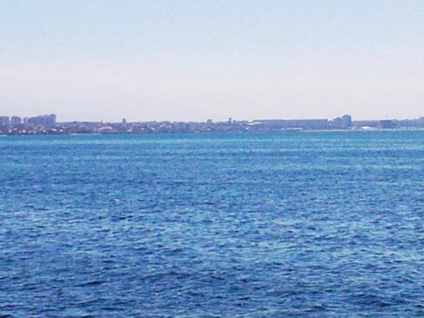 Alger-plage