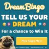 Dream Bingo's Happy Leap Year game