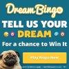 Dream Bingo's Happy Leap Year game