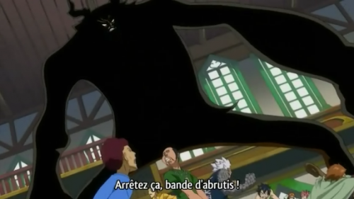 Chapitre II - L'arrivé à Fairy Tail !