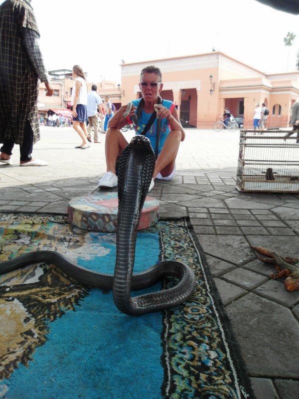 avec deux serpents et le cobra trop près grrrrrrrrrrrr