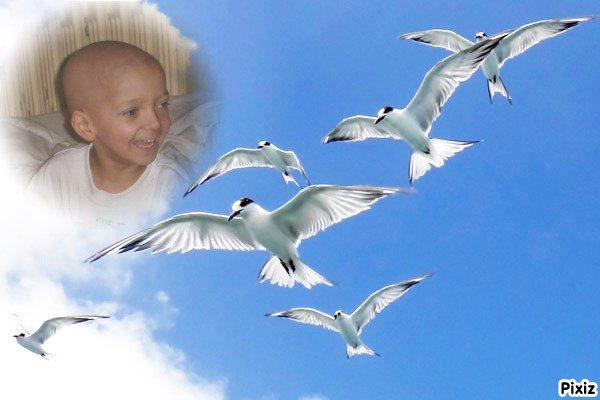 Martine , pour toi ti ange