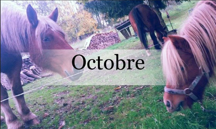Octobre 2015.