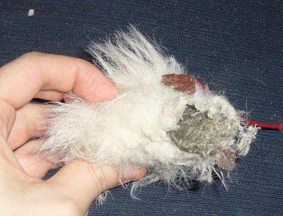 La mort de la souris !