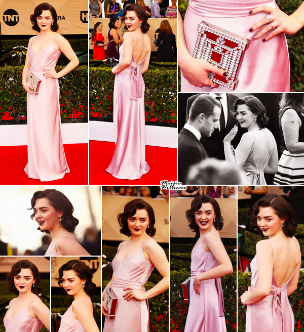 29/01/17 ─ 23RD ANNUAL SCREEN ACTORS GUILD AWARDS