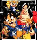 Photo de dragon-ball2008