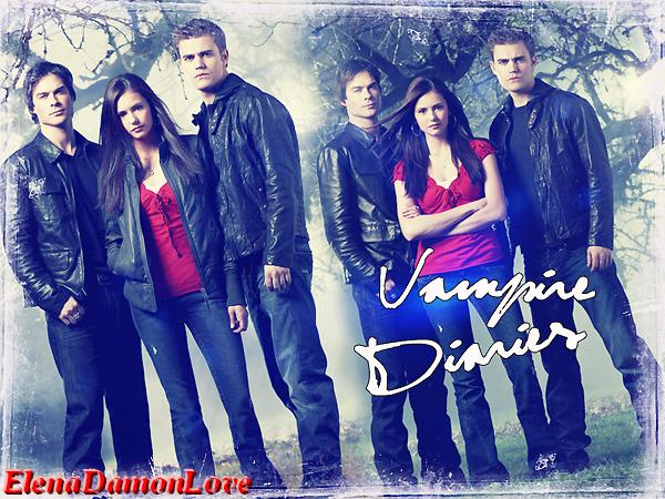 Vampire Diaries / Résumé :