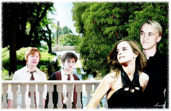 Hahaha Drago et Hermione s'enfuient, Harry et Ron bouche bée!!