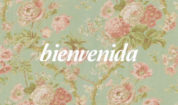 Welcome Bienvenue Bienvenido