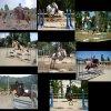 chevaux-du06250
