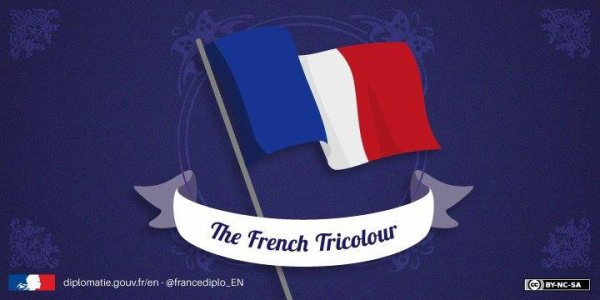 FRANCE FLAG MEANS TRI COLOUR FLAG
