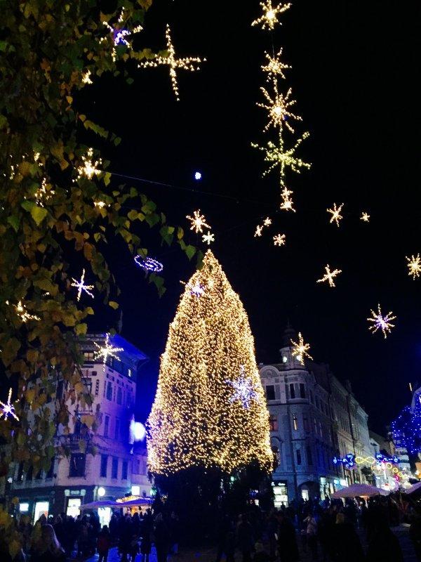 Quand les places des villes sont éclairées en l'honneur de noël..  Wenn die Plätze der Städte für dieWeihnachtsehre beleuchtet werden.
