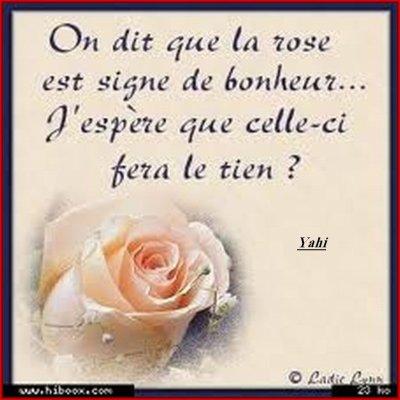 Joyeux Anniversaire Rose De Sable Echos De La Rubrique Algerie