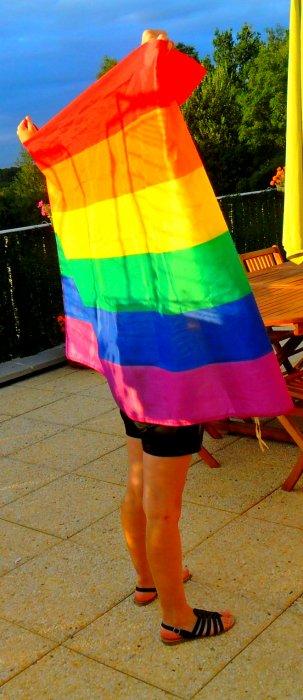 On changeras pas pour vous ; Stop aux homophobes !