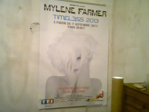 Affiche Timeless 2013