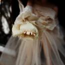 Photo de Psycho-dolls