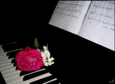 ♥♥ → Le piano : Ma passion ← ♥♥