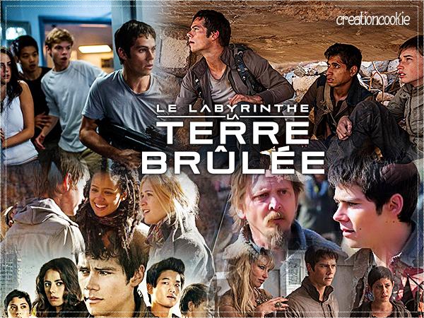 Le Labyrinthe 2 La Terre Brulée