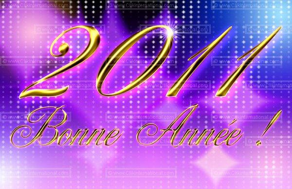 BONNE ANNEE 2011 A TOUS!!!!