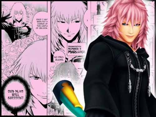 Marluxia ( L'assassin Sublime )