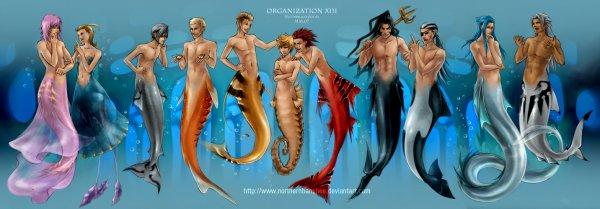 L'organisation sous-marine